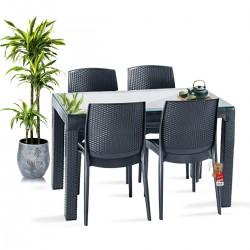 Bahex Violet 70x120Cm Camlı 4 Natura Sandalyeli Rattan Bahçe Balkon Masa Takımı